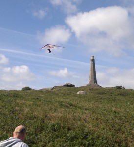 Falcon over Carn Brea